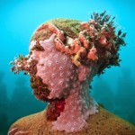 Jason Decaires Taylor # update